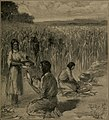 The story of corn and the westward migration (1916) (14597715690).jpg