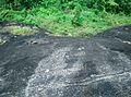 Thrikkadeeri -I, Kerala, India - panoramio (3).jpg