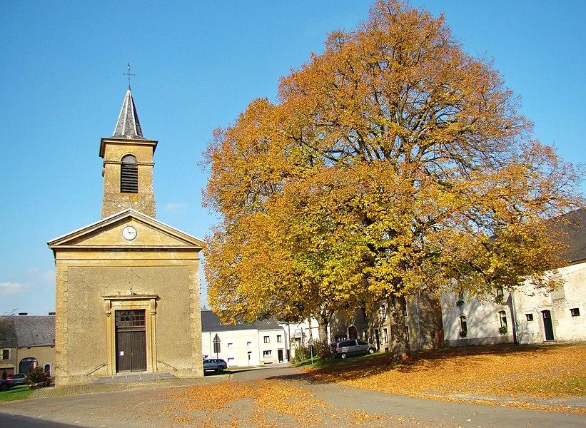 Tilleul remarquable place Saint-Michel à Chantemelle