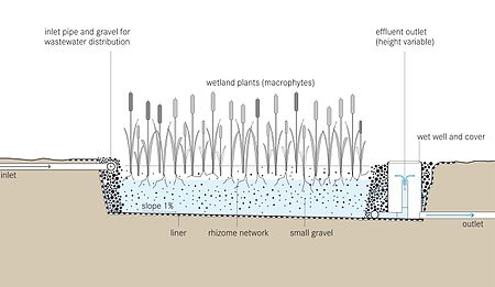 Tilley et al 2014 Schematic of the Horizontal Subsurface Flow Constructed Wetland.jpg