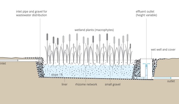 Tilley et al 2014 Schematic of the Horizontal Subsurface Flow Constructed Wetland
