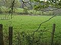 To Frenchbridge Gill - geograph.org.uk - 411988.jpg