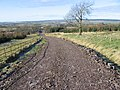 Track from Lambhill - geograph.org.uk - 331456.jpg