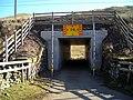 Tunnel Under Railway - geograph.org.uk - 375696.jpg