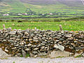 Typical Stone Wall and Fields - geograph.org.uk - 17682.jpg