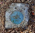 U.S. Coast & Geodetic Survey - Lexington, MA - DSC04473.jpg
