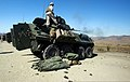 U.S. Marines serving with Alpha Company, 1st Light Armored Reconnaissance Battalion fire an M242 Bushmaster chain gun during a training exercise at Camp Pendleton, Calif., Aug. 20, 2013 130820-M-GO800-150.jpg