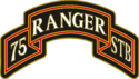 75th Ranger Regiment Special Troop Battalion (STB) Combat Service Identification Badge (CSIB)