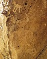 Uinta Fremont Indian petroglyphs (~1000 years old) (Dinosaur National Monument, Utah, USA) 5 (22701772350).jpg
