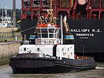 Union Eagle, Zandvlietsluis, Port of Antwerp, pic6.JPG