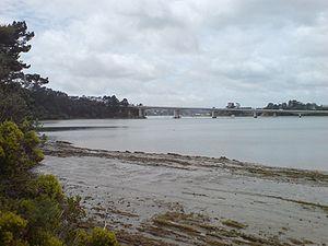 Upper Harbour Bridge - The bridge from the north.