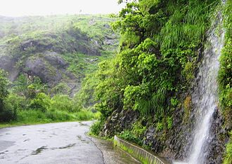 Vagamon - Waterfall on Vagamon road