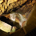 Vallorbe Grottos Subterranean River.jpg