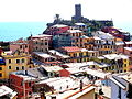 Vernazza from above2.jpg