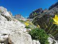 Verso il Principe , Dolomiti,il piu bel patrimonio dell'Unesco - panoramio.jpg