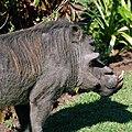 Victoria Falls 2012 05 24 1578 (7421898060).jpg