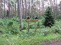 Vievio sen., Lithuania - panoramio (25).jpg