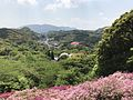 View from Azalea Valley in Mifuneyama Garden 2.jpg