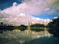 View from Parque do Ibirapuera.jpg