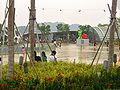 VivoCity Roof Garden 4.jpg