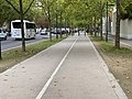 Voie Cyclable Avenue Charles Gaulle - Maisons-Alfort (FR94) - 2020-10-16 - 2.jpg