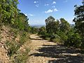 Vuelta a Can Genoer - panoramio (2).jpg