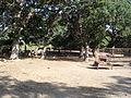 Wagon Wheel Ranch-1.jpg