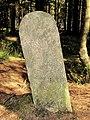 Waimes - Borne Luxembourg-Stavelot - Bois de Sourbrodt(3).jpg