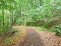 Waldweg bei Maria Laach.jpg