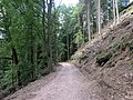 Wanderweg zur Wegelnburg 07.jpg