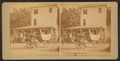 Washington's carriage, from Robert N. Dennis collection of stereoscopic views.png