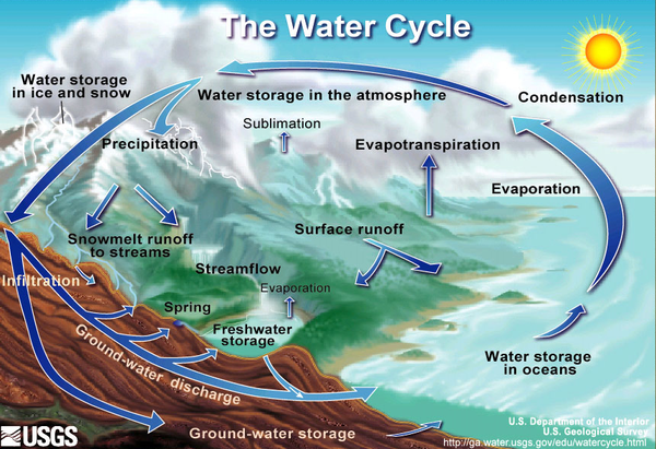 Condensation and coalescence are important parts of the water cycle. Water cycle.png