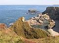 Western Cove - geograph.org.uk - 317959.jpg