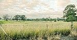 Western Sydney (Badgerys Creek) Airport site - Anton Rd.JPG