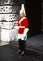 Whitehall Life Guard.jpg