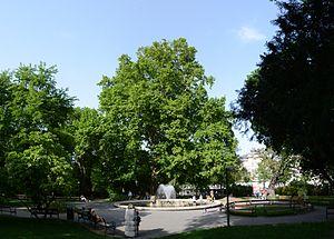 Rathauspark - Rathausplatz