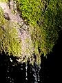 WikiProjekt Landstreicher Wasserfall Hinang 28.jpg
