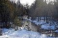 Winter creek, Drummond Island - 49368367476.jpg