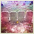 Witkowice - World War I Cemetery 01.jpg