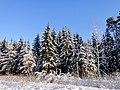 Wonderful day - panoramio.jpg