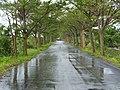 Xiapu 下埔 - panoramio.jpg
