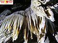 Yagodina cave P0078.JPG