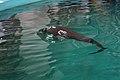 Yangtze finless porpoise, 27 July 2011d.jpg