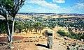 York, Western Australia, as seen from Mount Brown (19885634790).jpg