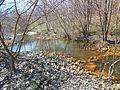 York Prairie Creek (Cardinal Creek), Muncie, Indiana.JPG