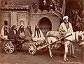 Zangaki. 0896. Arab with Three Wives and Two Servants cropped.jpg
