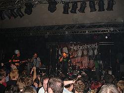 Zebrahead 2006.jpg