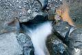 Zermatt (5064664509).jpg