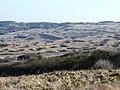 Zone bombardée - panoramio.jpg