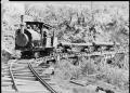 """Knight's tram, Raurimu"" hauling logs. ATLIB 333371.png"